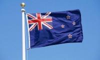 新西兰最常见的三种配偶工签介绍